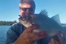 September-15-Silver-Bass